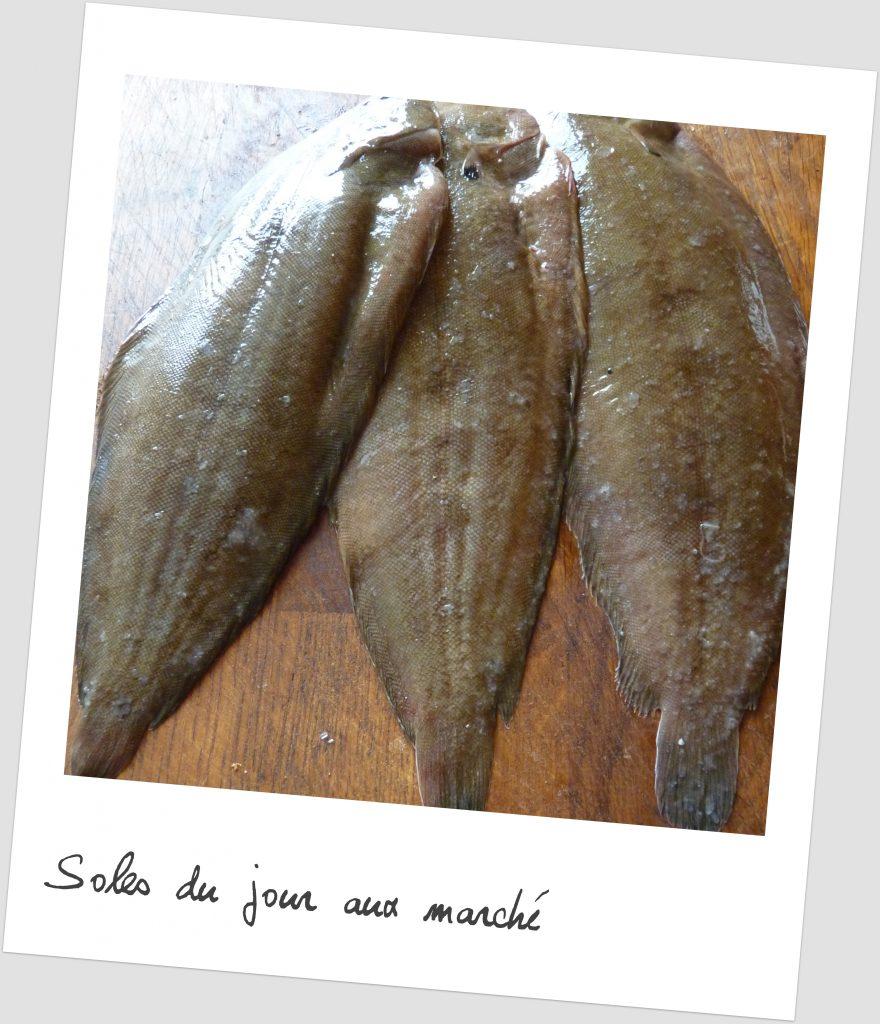 soles de Noirmoutier