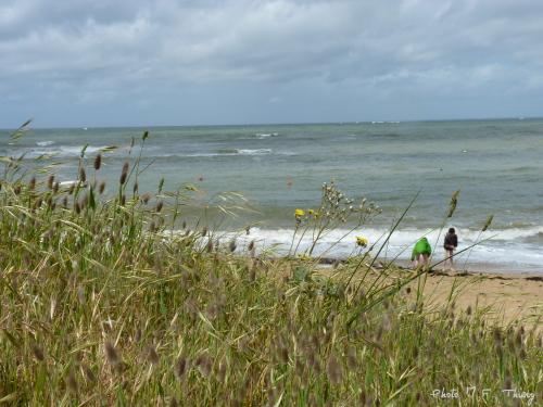 la plage de la Madeleine au Vieil