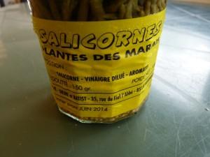 Salicorne des marais de Noirmoutier