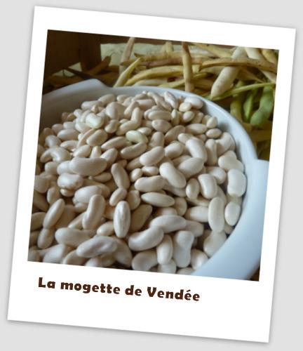 Mogette de Vendée