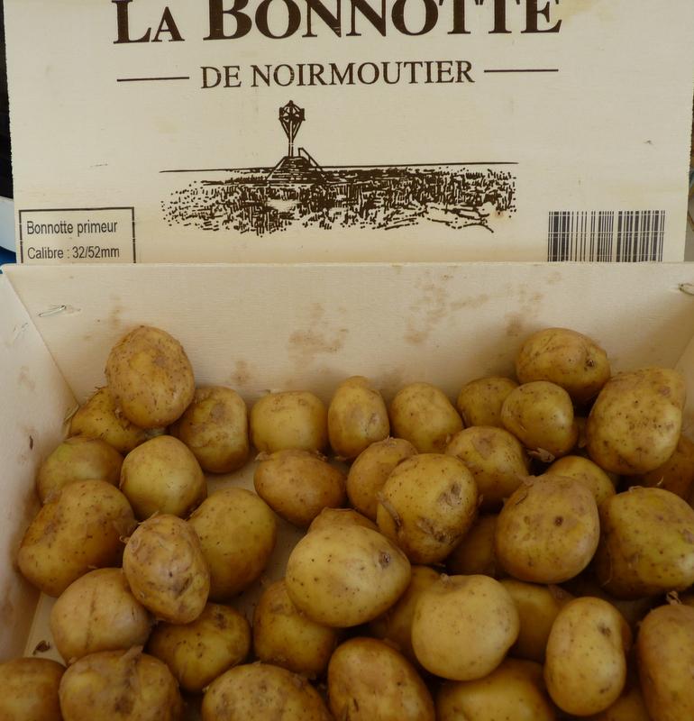 bonnottes de Noirmoutier