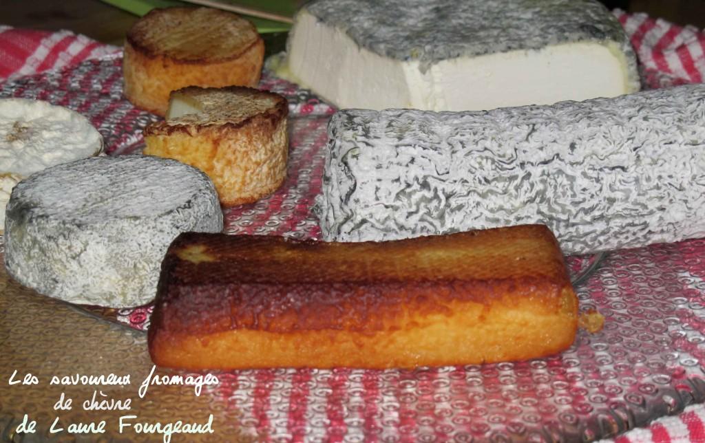 Fromages de chèvre Ferme du Chatain
