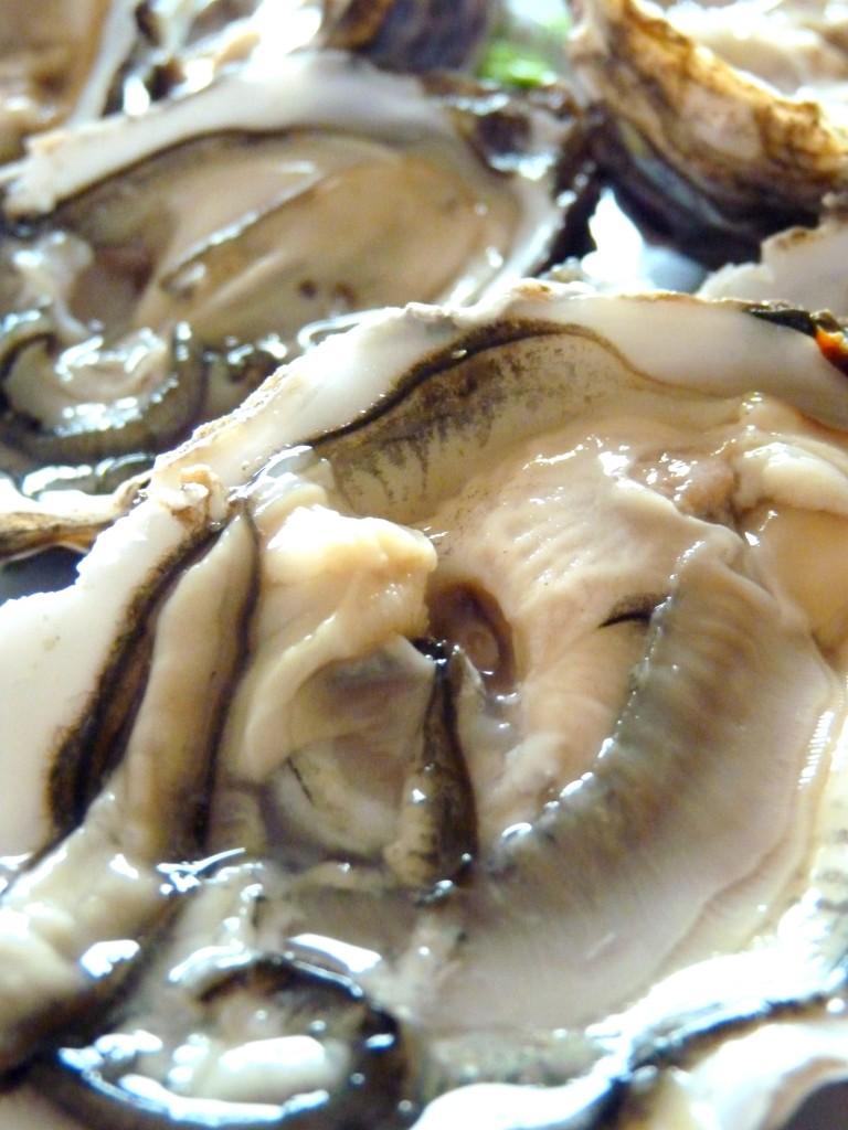 Huîtres de Vendée