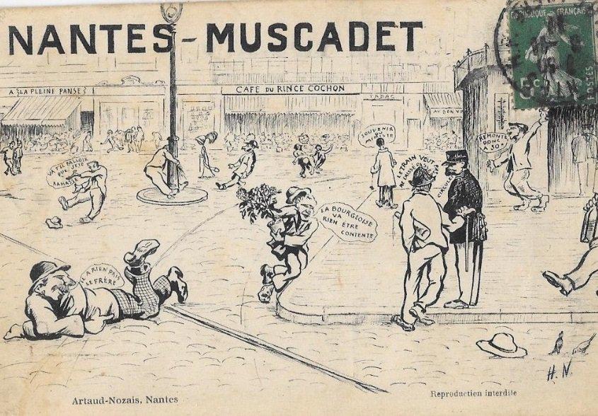 Illustration muscadet