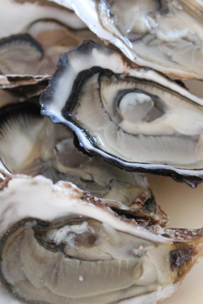 Huîtres Vendée-Atlantique pour pot au feu d'huîtres au citron noir d'Iran
