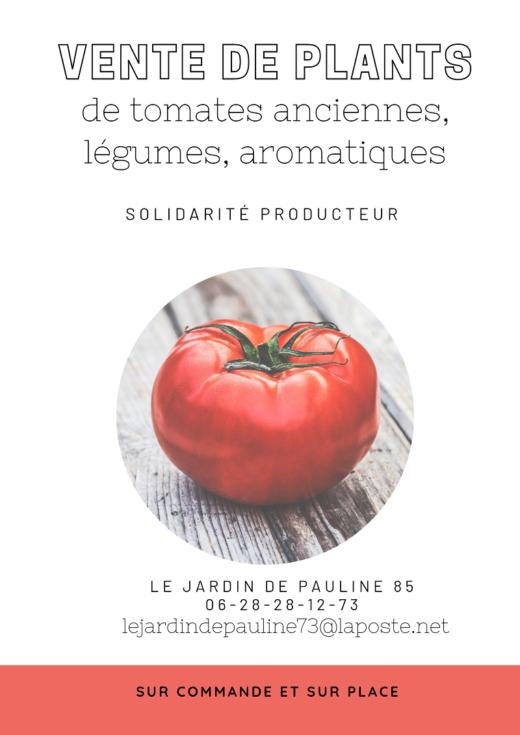 vente plants de tomates le jardin de Pauline 85