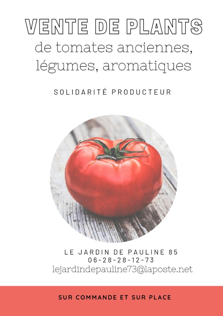 vente plans de tomates le jardin de Pauline 85